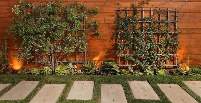 7 Tips for Choosing the Right Backyard Fence Colour – 2021 Guide