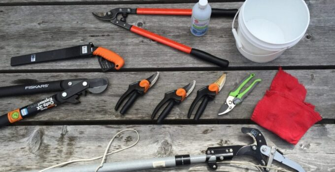 7 Best Tree Pruning Tools every house Owner Needs to Own